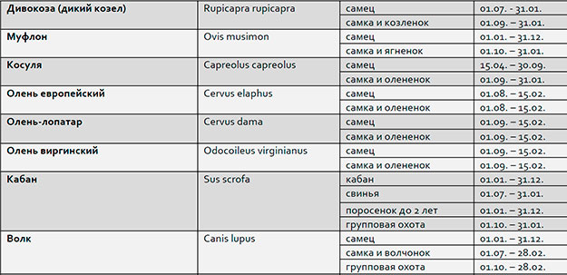 Охота в России, индивидуальный подход для каждого клиента гарантирован